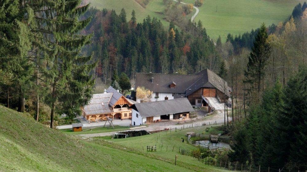 Schluchtenhütte das Ausflugsziel zum Wandern in Niederösterreich